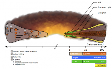 Grain Growth in Protoplanetary Discs